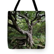 Hold Firm Tote Bag