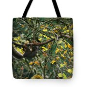 Hold On Baby Tote Bag