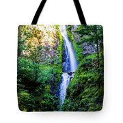 Hole In The Wall Falls Tote Bag