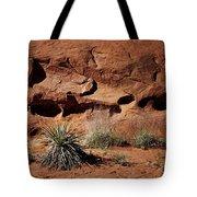 Holes - Yucca - Kodachrome Basin Tote Bag