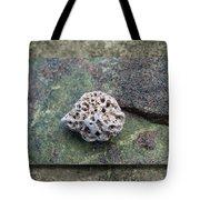 Holey Stone 2 Tote Bag