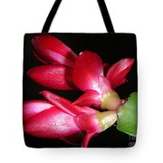 Holiday Cactus - A Close Up Tote Bag
