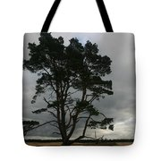 Holland Desert Tote Bag