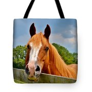 Holly Springs Tote Bag