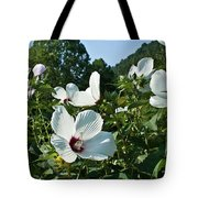 Hollyhock At Sunrise Tote Bag