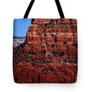 Holy Cross Cathedral Tote Bag