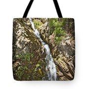 Holy Jim Falls Tote Bag