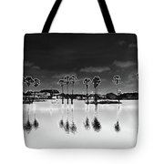Homage To The Moon Tote Bag
