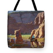Home After The Storm Tote Bag