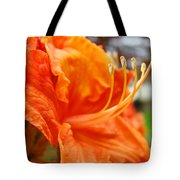 Home Decor Orange Rhodie Flower Art Print Baslee Troutman Tote Bag