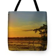 Home Home On The Swamp Tote Bag