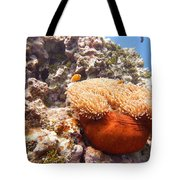 Home Of The Clown Fish 4 Tote Bag