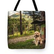 Home Owner Tote Bag