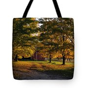 Homecoming Two Tote Bag