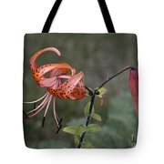 Homestead Tiger Lilly Tote Bag