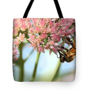Honey Bee 2 Tote Bag