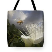 Honey Bee Apis Mellifera Approaching Tote Bag by Mark Moffett