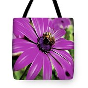 Honey Bee On A Spring Flower Tote Bag