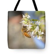 Honey Bee On Herb Flowers Tote Bag