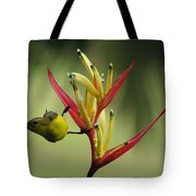 Honeyeater On Bird Of Paradise Tote Bag