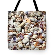 Honeymoon Island Shells Tote Bag