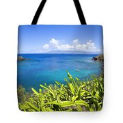 Honolua Bay Tote Bag