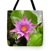 Honolulu Water Lily Tote Bag