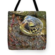 Honu In The Water Tote Bag