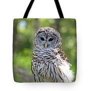 Hoo Are You Tote Bag