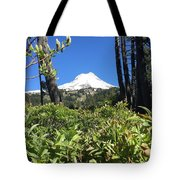 Hood View Tote Bag