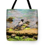 Hooded Crow Tote Bag