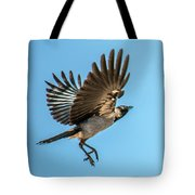 Hooded Crow In Flight Tote Bag