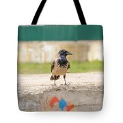 Hooded Crow On A Wall Tote Bag