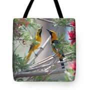 Hooded Oriole Duo Tote Bag