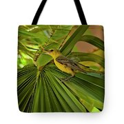 Hooded Oriole H01 Tote Bag