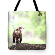 Hooded Vulture Tote Bag
