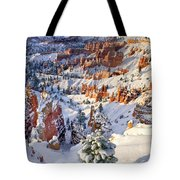 Hoodoos And Fir Tree In Winter Bryce Canyon Np Utah Tote Bag