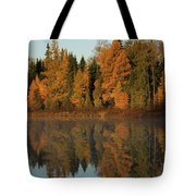 Hooker Lake Reflections Tote Bag
