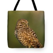Hoot A Burrowing Owl Portrait Tote Bag