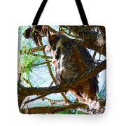 Hoot Is Down There? Tote Bag