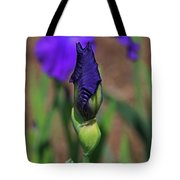 Hope Is The Soul Of The Dreamer Tote Bag