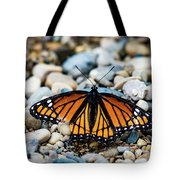 Hope Of The Monarch Butterfly Tote Bag