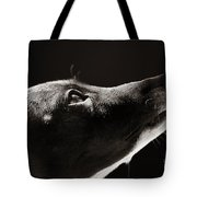 Hopeful Tote Bag