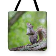 Hopes And Wishes Tote Bag