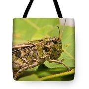 Hopper Face To Face Tote Bag