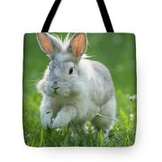 Hopping Rabbit Tote Bag