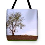 April Horizon  Tote Bag