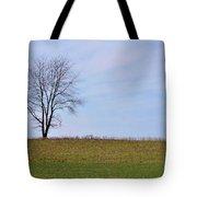 Spring Horizon  Tote Bag