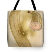 Horn Plantain, 1585 Tote Bag