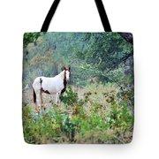 Horse 017 Tote Bag